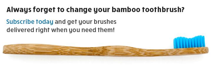 Bamboo toothbrush subscription.jpg