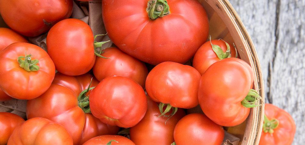 tomatoescrpped.jpg