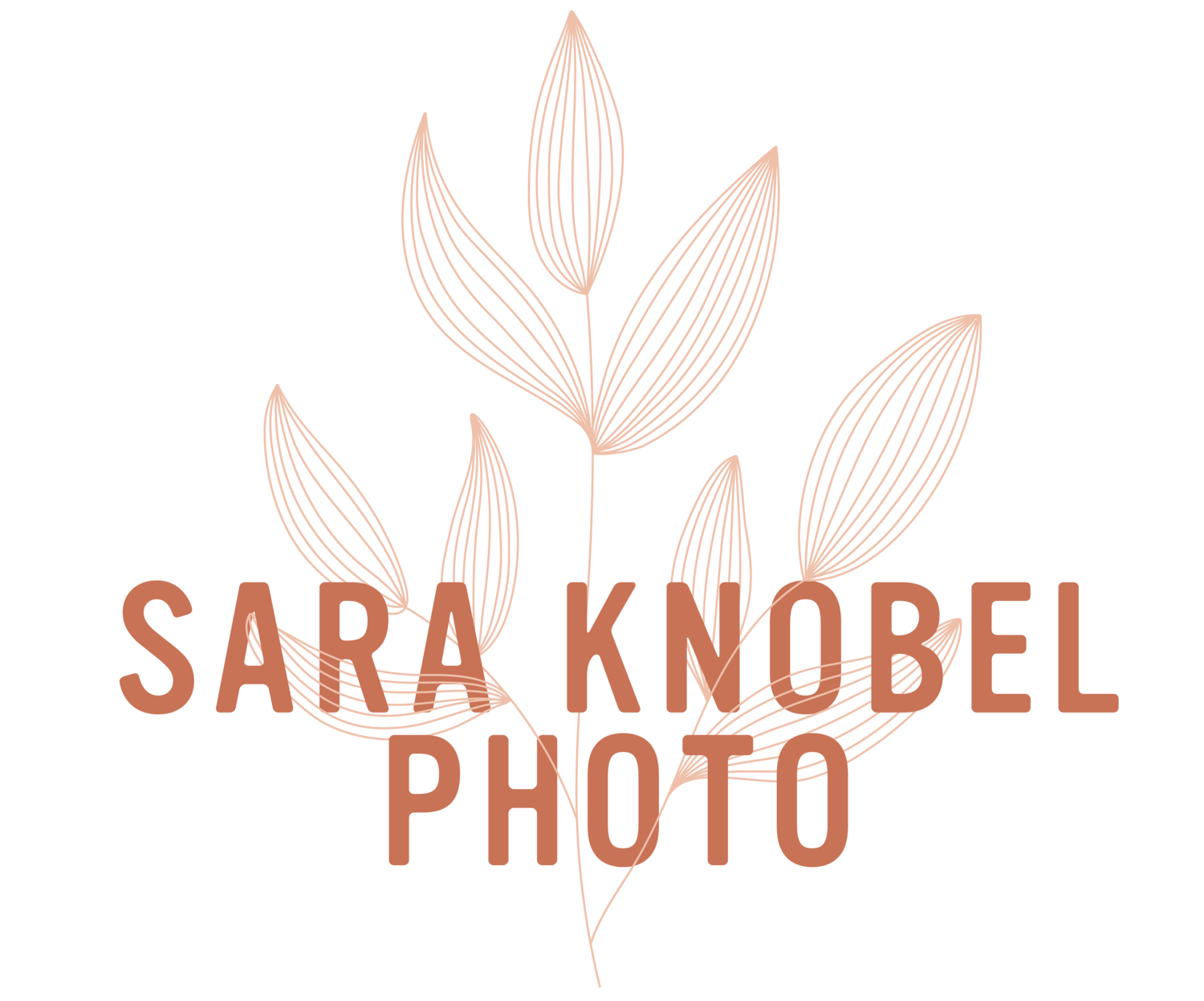 Sara Knobel Photo