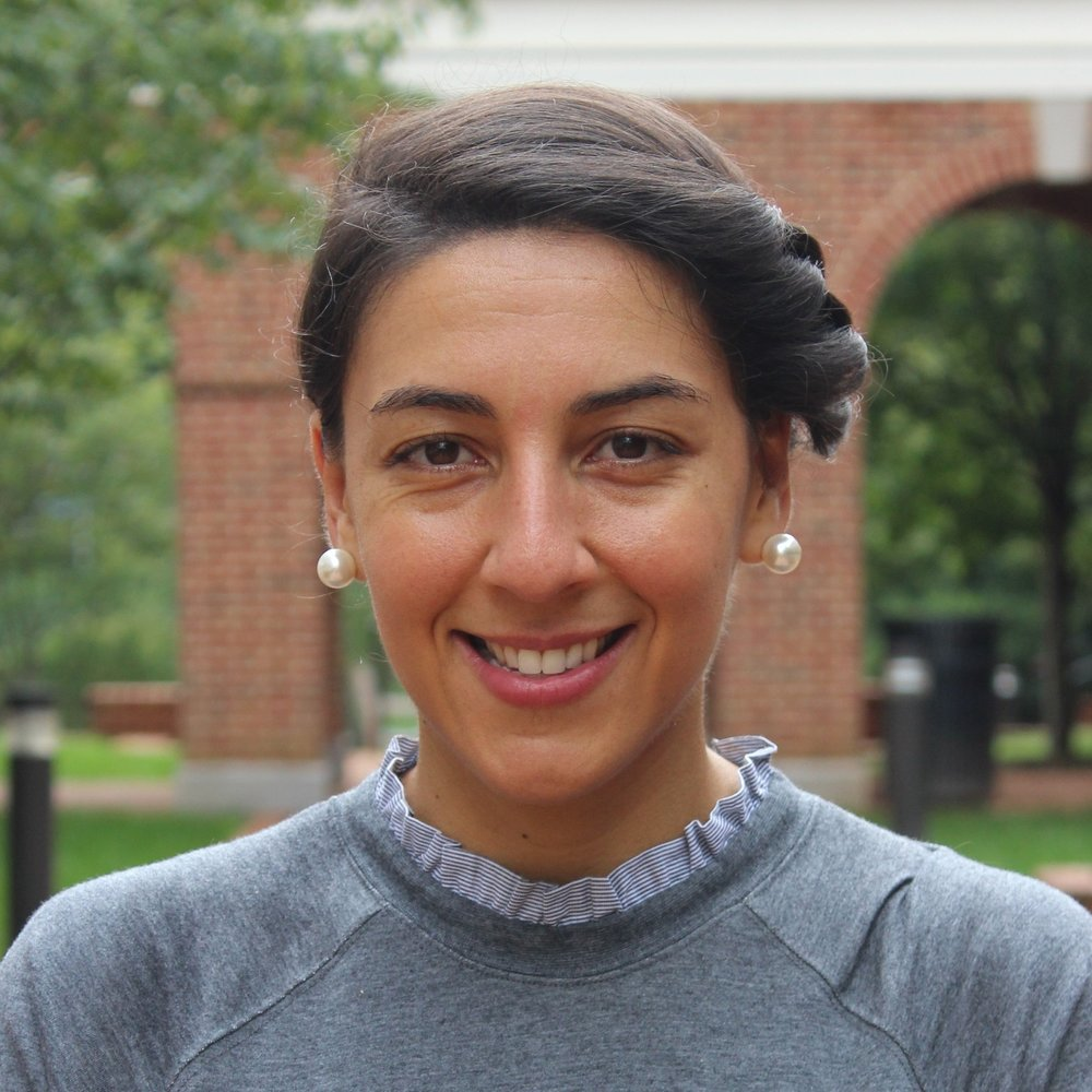 Shereen El Mallah, VEST Post-Doctoral Fellow - Shereen El Mallah's research endeavors have focused broadly on advancing the science and practice of social emotional learning by addressing the developmental and sociocultural factors that may contribute to the feasibility, receptiveness, and sustainability of school-based programs.