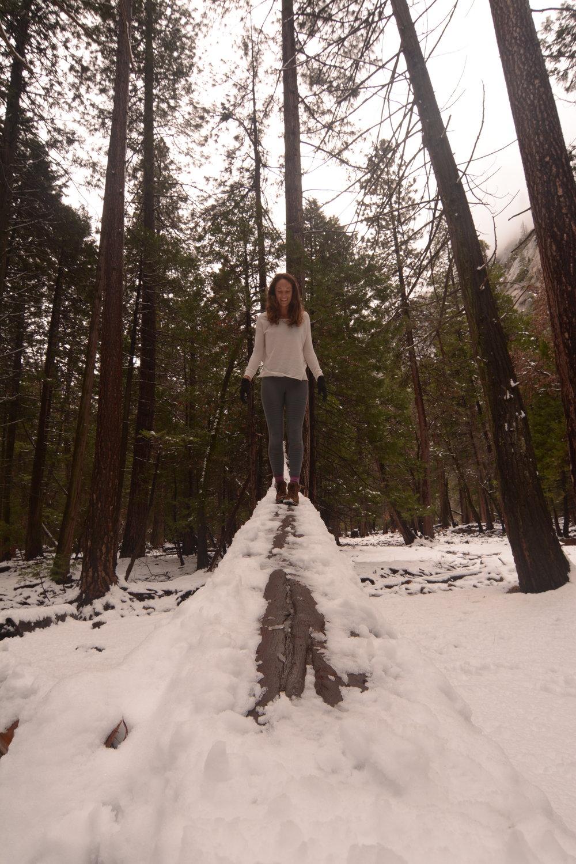 snowsemite.JPG