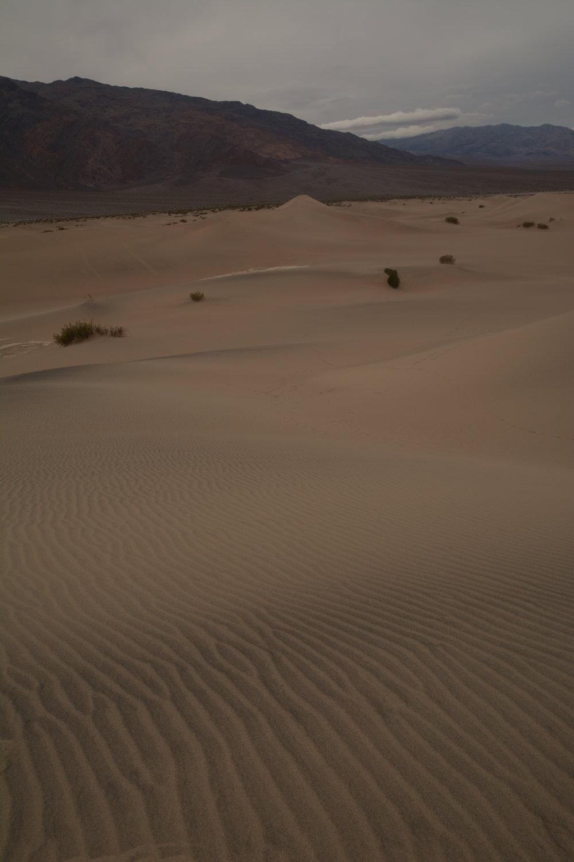 sand lines.JPG