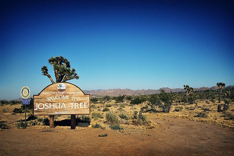 welcome to joshua tree.jpg