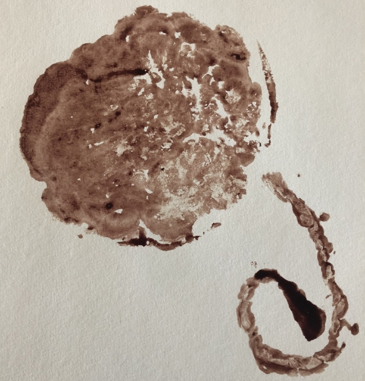 We make placenta prints  - a unique and beautiful birth keepsake. Email us to inquire.