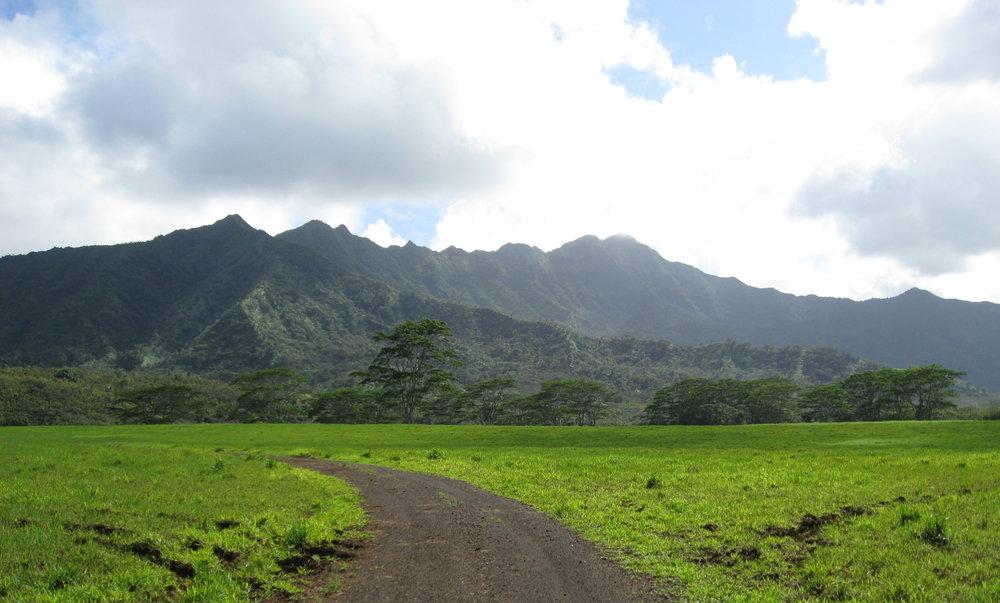 Kauai mar08 210.jpg