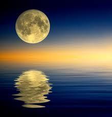 full-moon-double-bay-meditation-centre.jpg