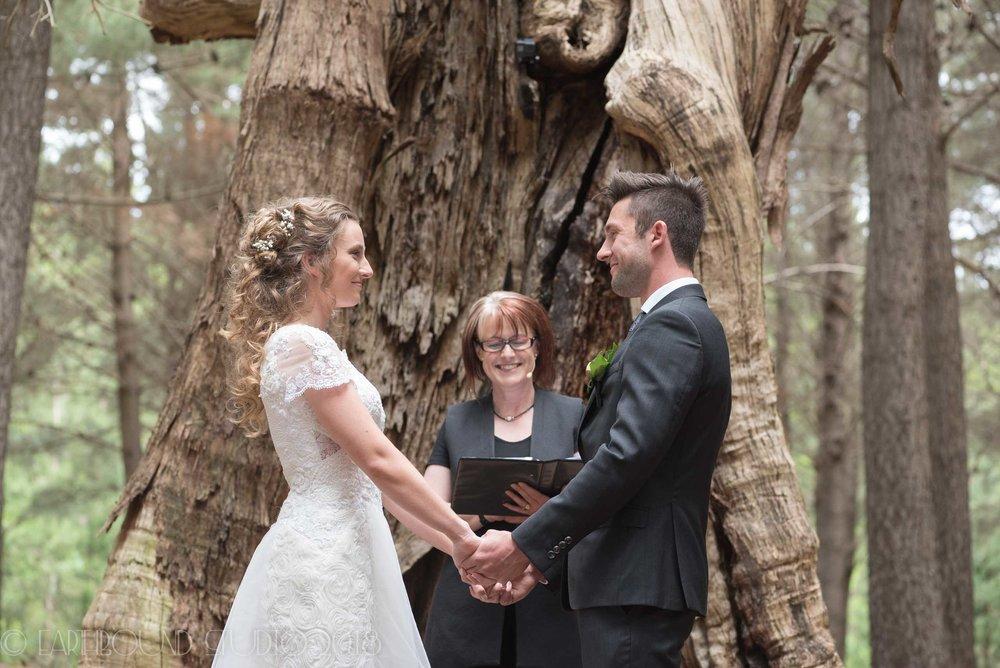 20161121-155136Joel&Bella_Wedding.jpg
