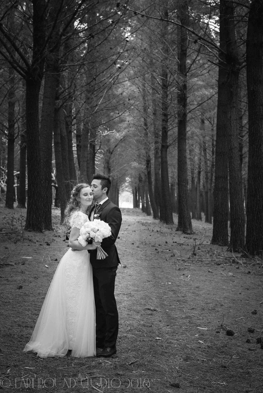 20161121-164517Joel&Bella_Wedding.jpg