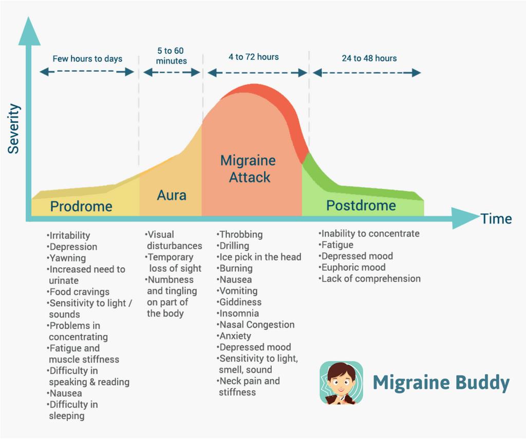 Migraine Symptoms: The Stages of a Migraine — Migraine Buddy