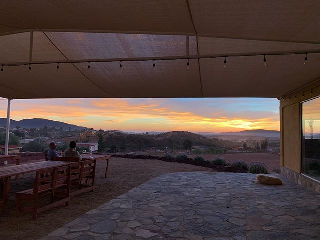 Buena comida y buen vino hacen una buena noche. /////////////////////// Good food and good wine make for a good night. . . . . . #CarneyVino #valledeguadalupe #parrillaargentina #cavamaciel #travel #mexico #wanderlust #ensenada #valledeguadalupe #bajawine #wine #travelgram #instatravel #vino #winecountry #winetasting #bajacalifornia #food #foodie ##instafood #vscofood #eatingfortheinsta #foodbeast #onthetable #eatfamous #nomnomnom #alwayshungry #thatvallelife