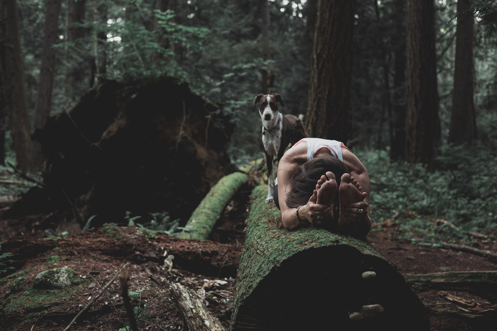 180620_raelene-yoga_0001.jpg