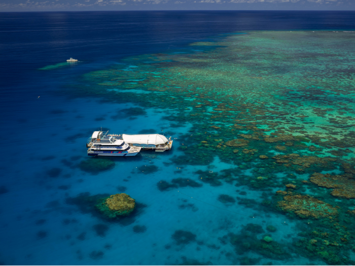 GREAT BARRIER REEF - The Great Barrier Reef is home to thousands of corals and comprises 900 islands. You can find tours such as Green Island, Fitzroy Island, Outer Reef and more.