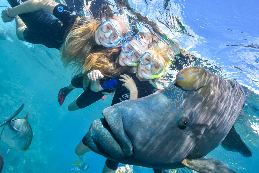 little-girls-snorkelling-with-Wally-at-Moore-Reef.jpg