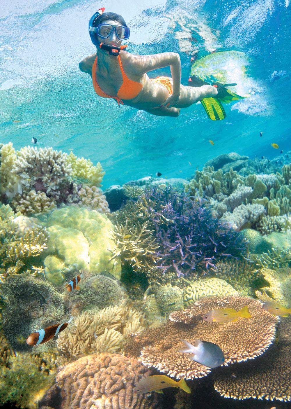 under_water_snorkeller.jpg