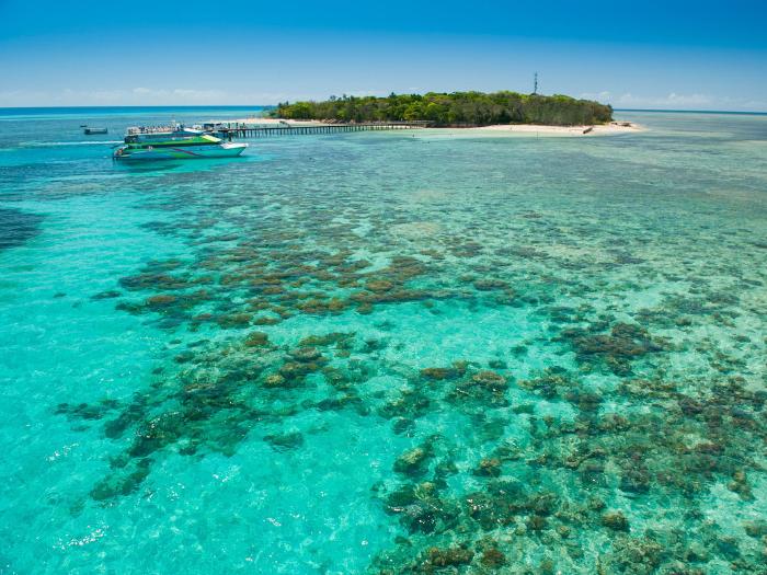 Bigcat Green Island Cruises -