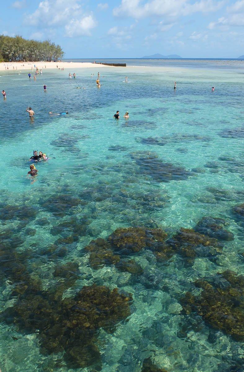 gagi-tour-green-island-cairns-40.jpg