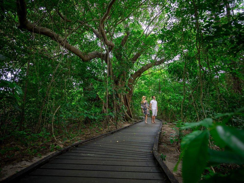 gagi-tour-green-island-cairns-46.jpg