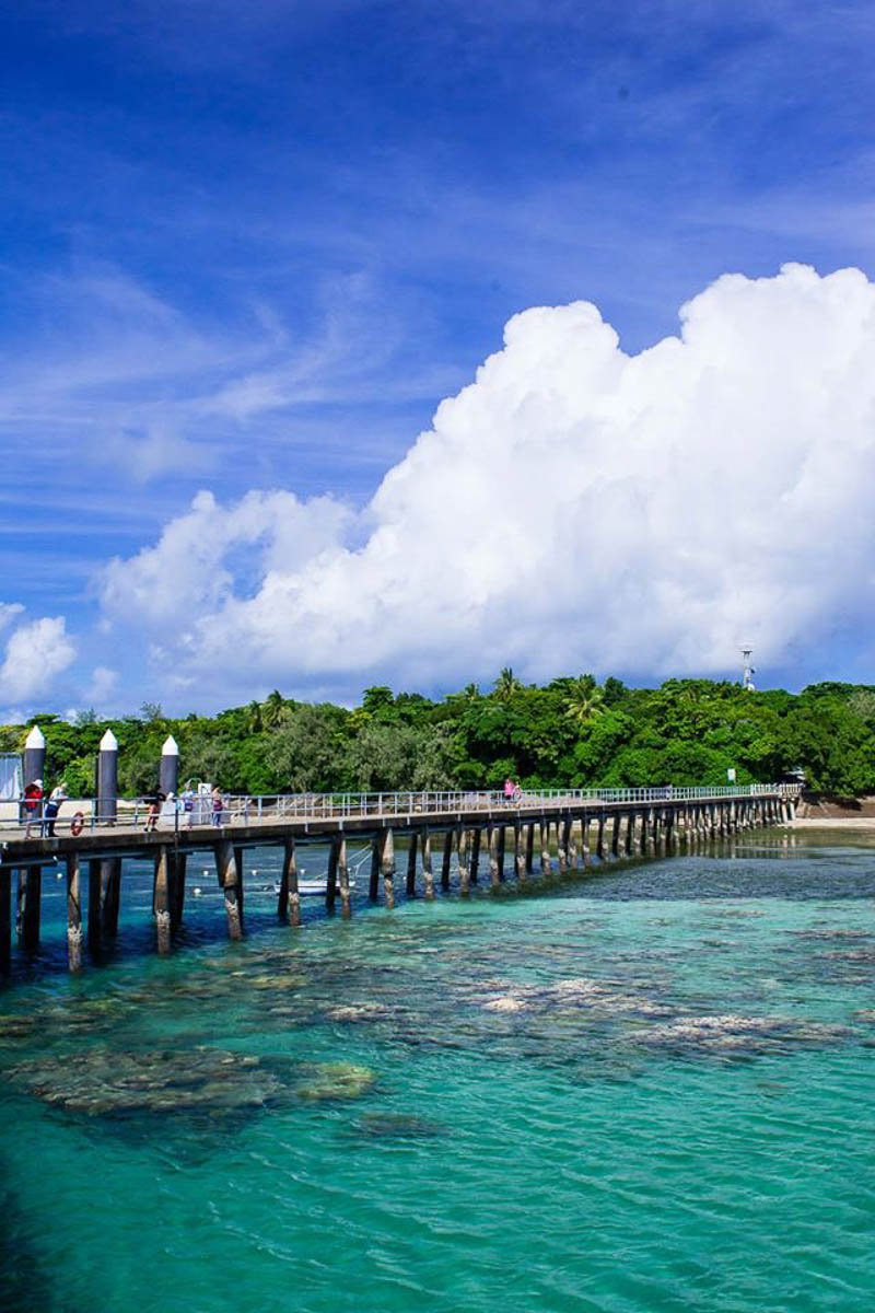 gagi-tour-green-island-cairns-51.jpg