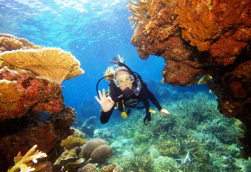 Channel-Diver.jpg