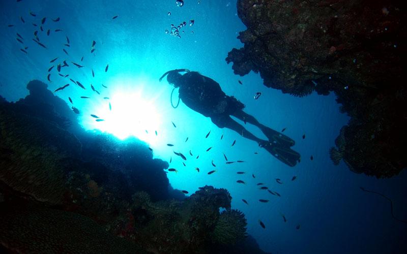 diver-silhouette.jpg