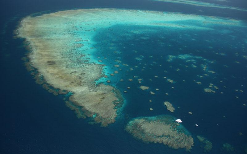 moore-reef-aerial.jpg