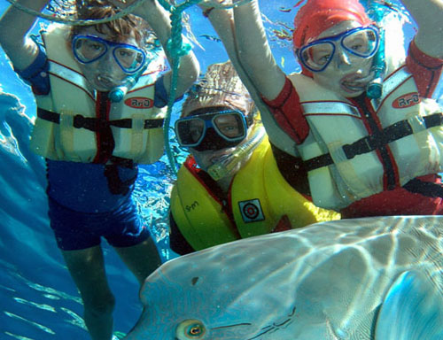 snorkellers-and-wally-with-ringf.jpg