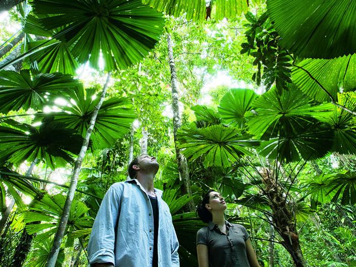 Active Tropics Explorer$149〜 -