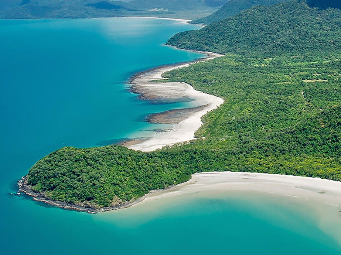 CAPE TRIBULATION - Cape Tribulation is a beautiful rainforest you must see. The Daintree Rainforest is the oldest continuously surviving tropical rainforest in the world, around 165 million years old.