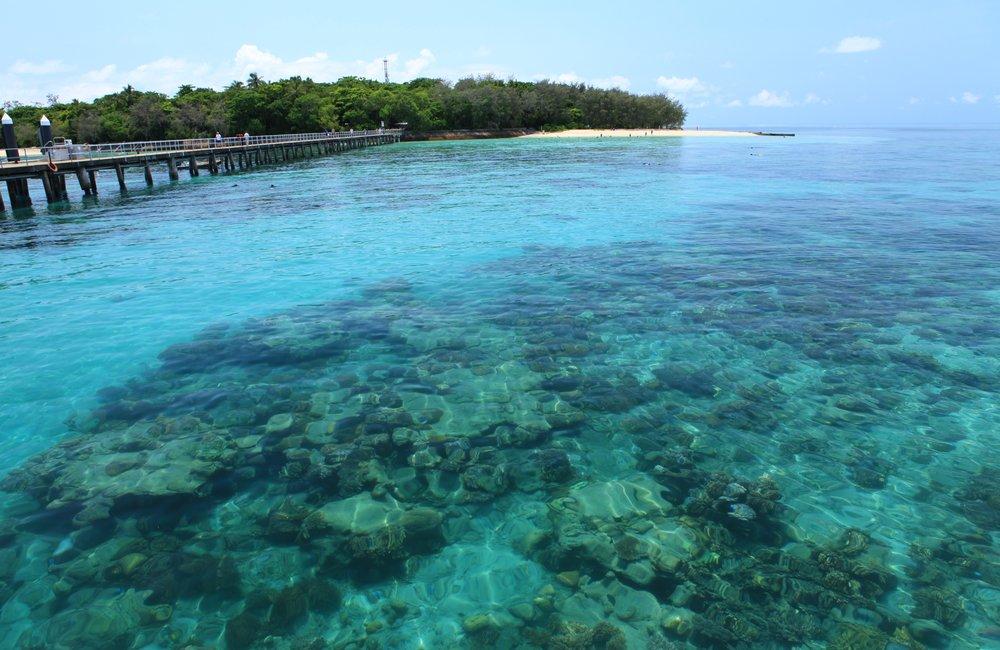 green_island_cam.jpg