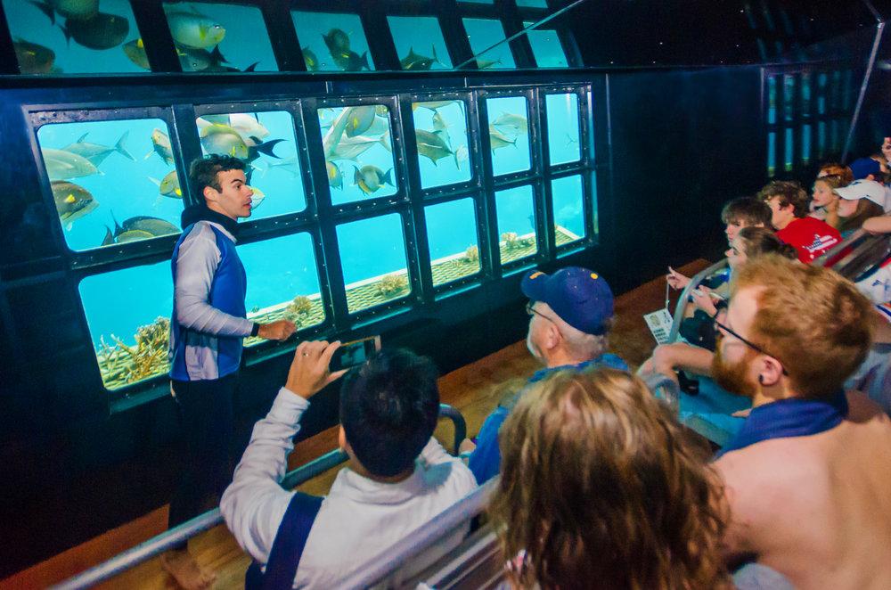 underwater-observatory-moore-reef.jpg