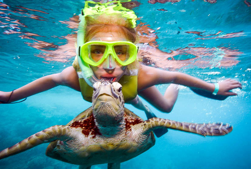 girl-snorkelling-with-turtle.jpg