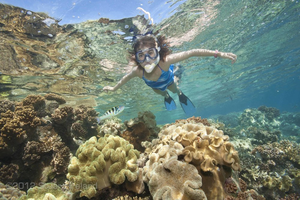 little-girl-snorkelling-over-coral.jpg
