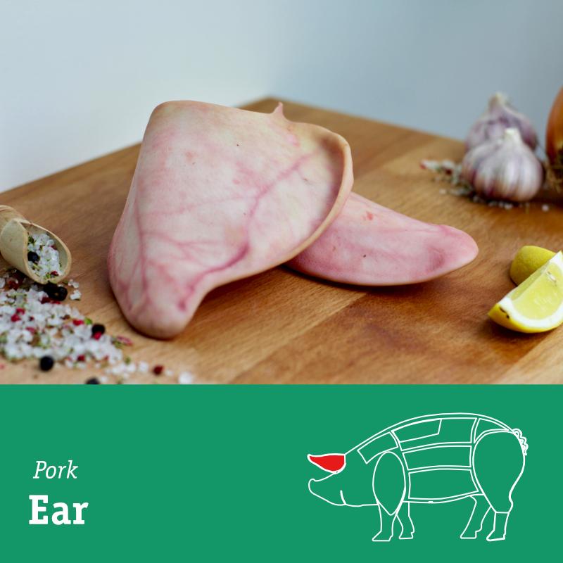 Ear.png