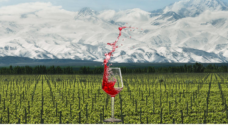 Terrazas Educational Wine Tasting Rollers Wine Spirits
