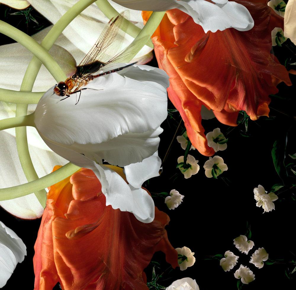 the instant garden -