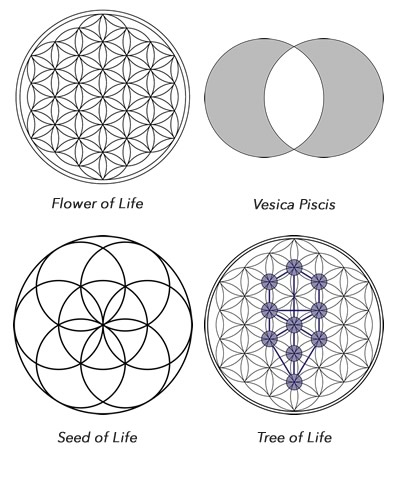Variations of the Flower of Life all contained therein.
