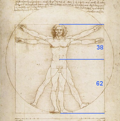 The Golden Ratio as it applies to the human body (courtesy of Leonardo Da Vinci.)