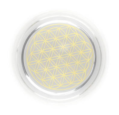 The Gold Flower-of- Life Design on the bottom of many of the Natures Design carafes and glasses.