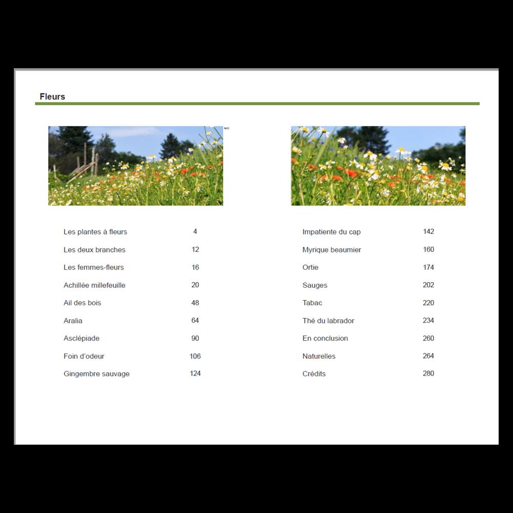 Les_fleurs_page02.png