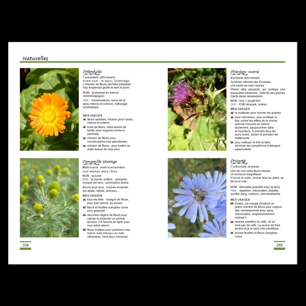Les_fleurs_page05.png