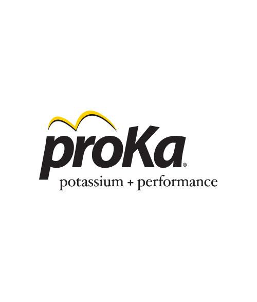 ProKa Logo.jpg
