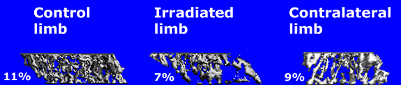 radiation_data.png