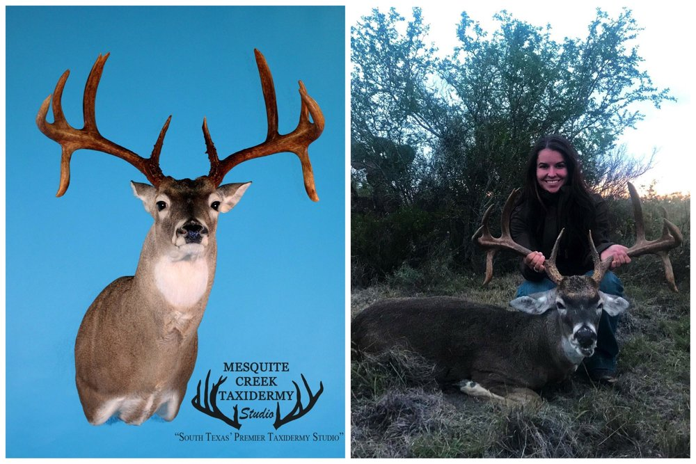 Classic South Texas Double Drops -