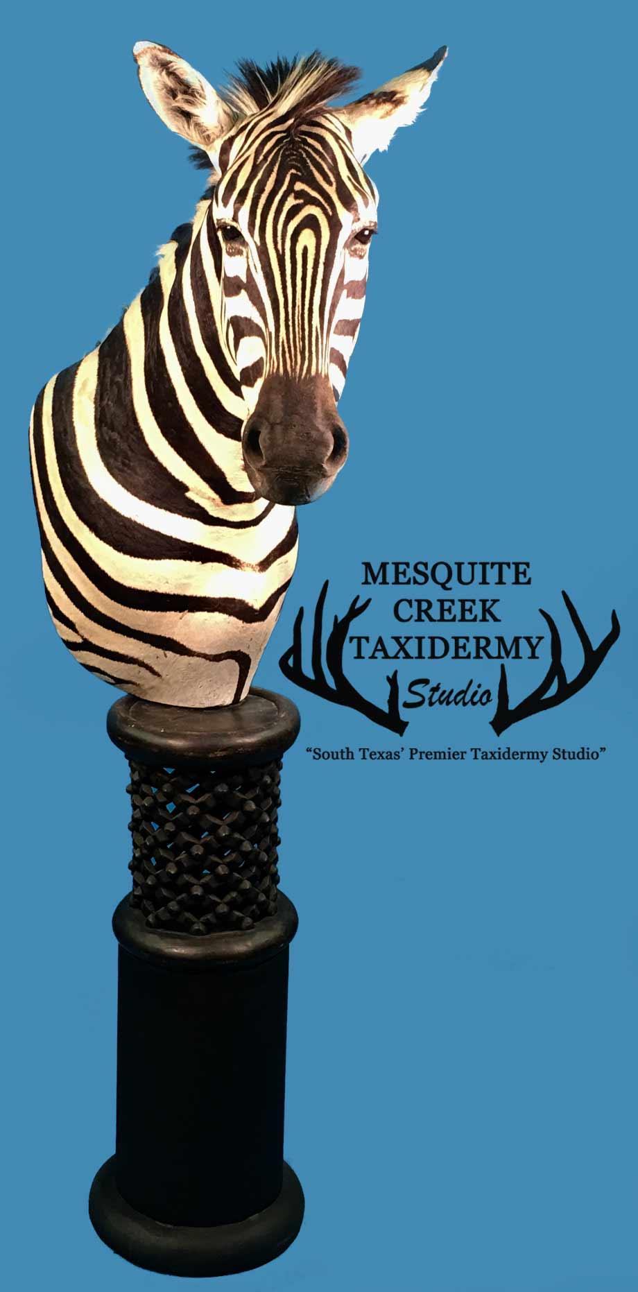 Zebra Pedestal -