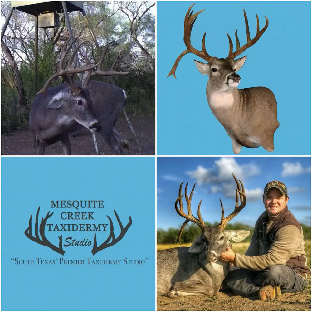 Diamond D Ranch & Outfitters Trophy