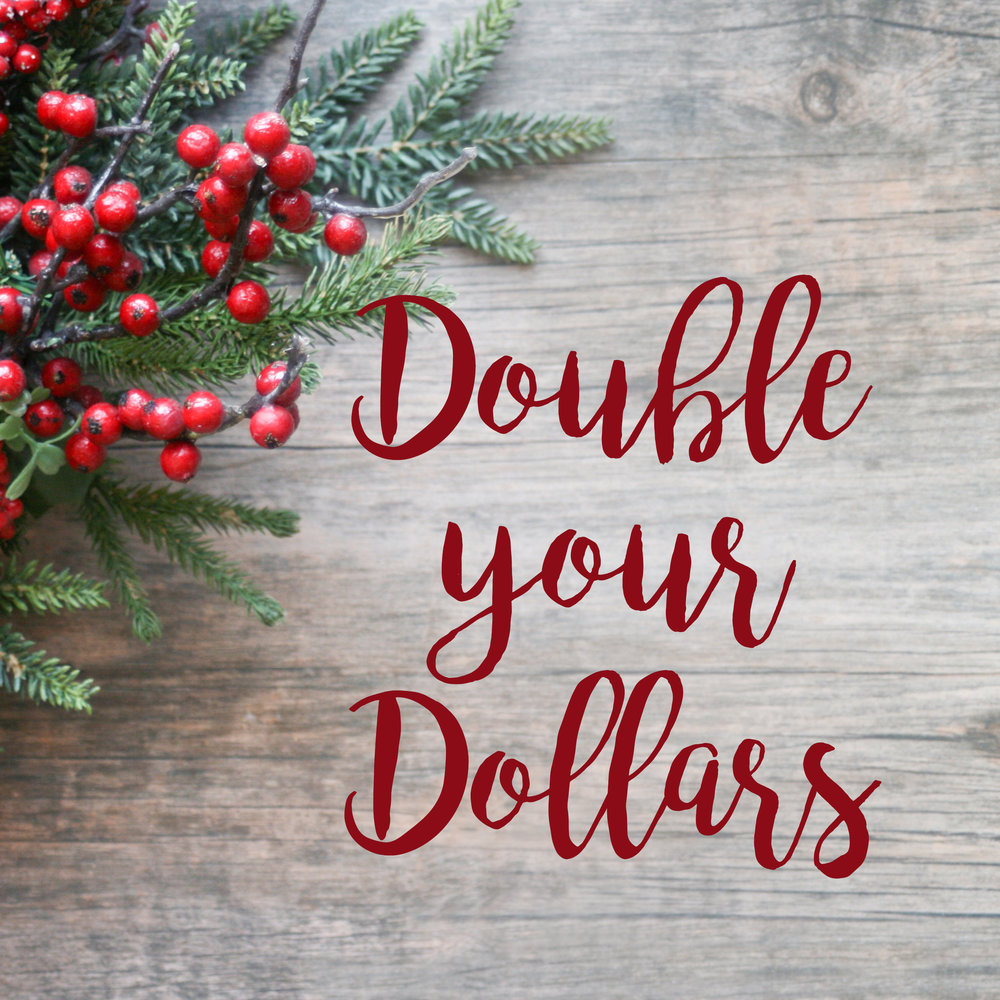 Buy a Gift Certificate during the month of December for a session in 2019 and recieve a promotional value of that amount    Buy a $500 GC get $1000, Buy a $1000 GC get $2000, Buy a $1500 GC get $3000    One Certificate per family, May buy additional as a gift.    Promotional value expires 12/31/19