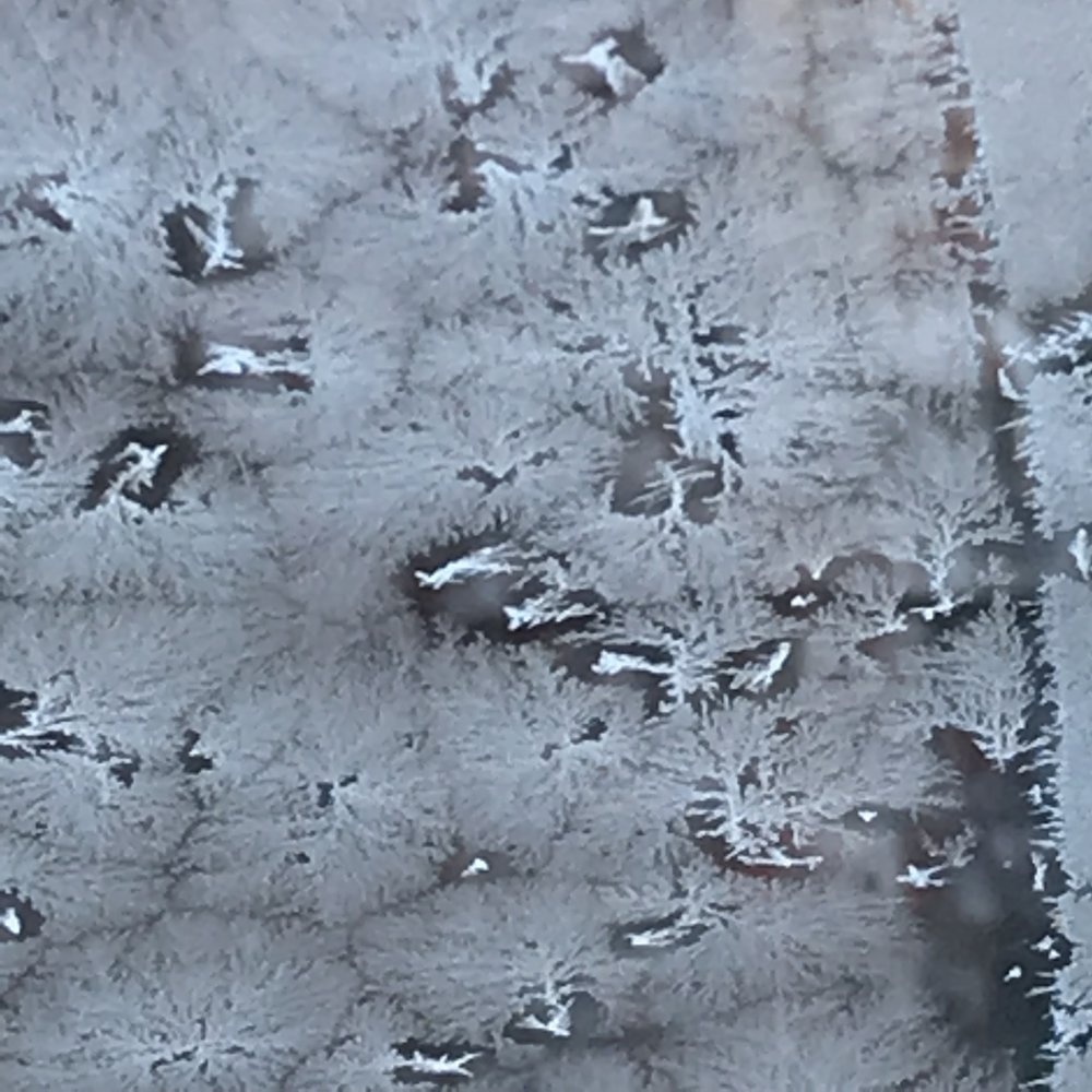 Cold and Texture, 2018. Photograph by Ginger Cochran