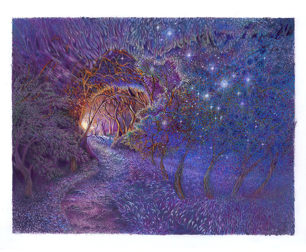 Starry Path, 2018, color pencil, ink, 14 x 17 inches original $1200, giclee print $140