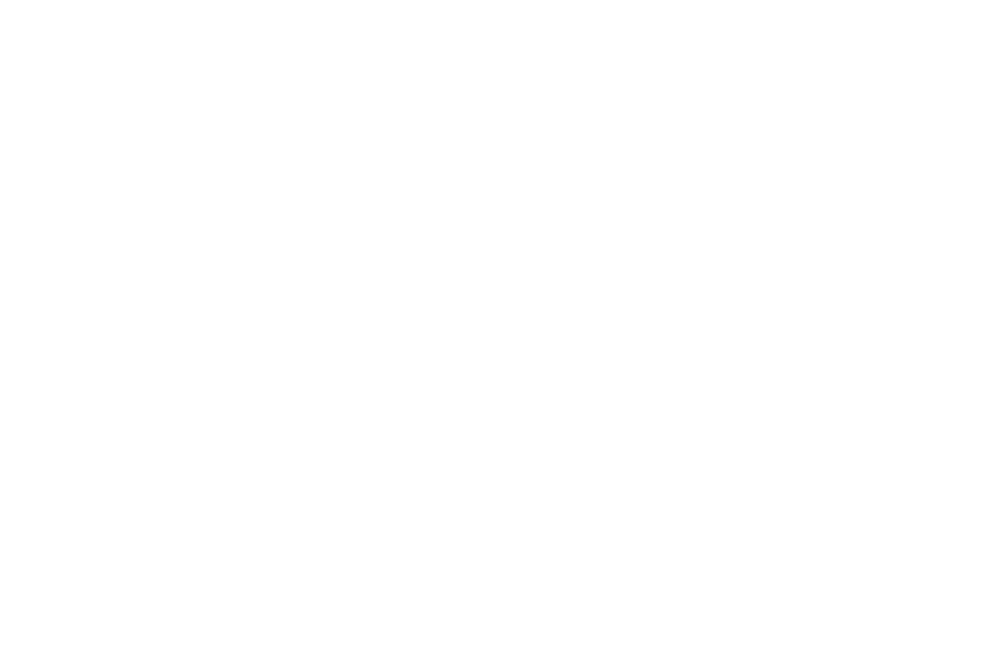 New Life Conference Logo-03.png