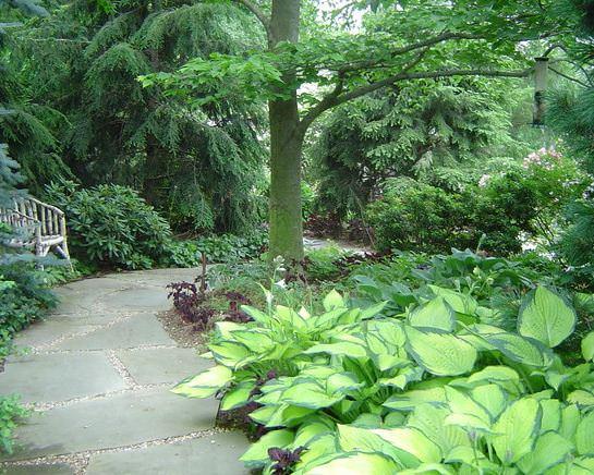 Slate in Garden by Statile & Todd